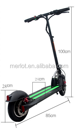 500w/800w/1000w EVO 2 wheels electric scooter/skateboard