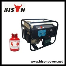 BISON(CHINA) BS6500NGLV High Quality Natural Gas Generator 5KW