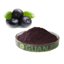 High Quality Best Price acai berry extract