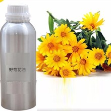 China manufacturer Natural Powder Chrysanthemum Oil