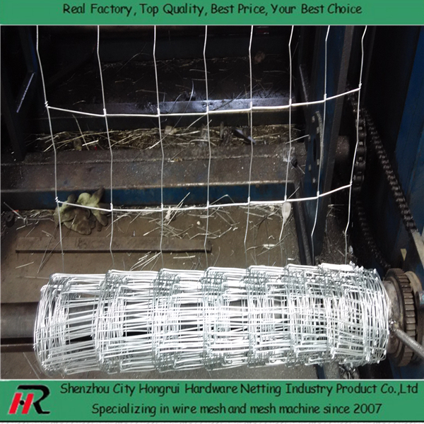 zinc/PEE coated high quality 1.2m goat fence for Australian market