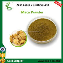Maca extract Wholesale/ Natural Herbal Medicine for big penis