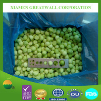 Hot sale deep frozen IQF green/yellow melon balls
