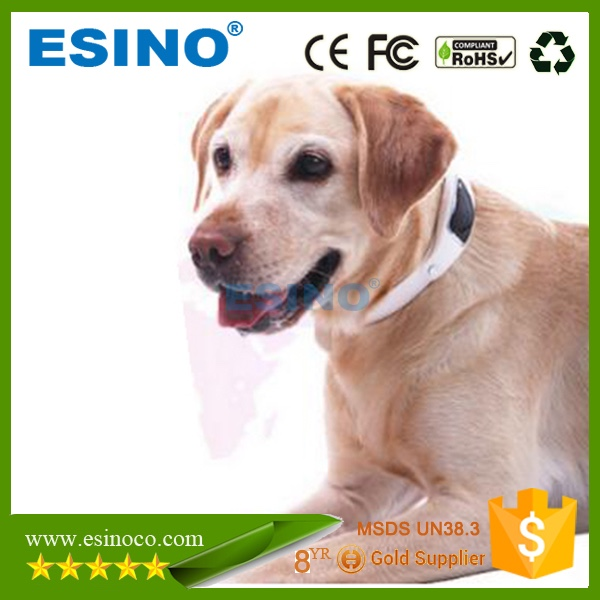 Small Size Pet GPS Tracker With Tracking Software