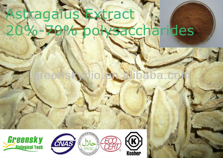 High Quality 20%-70% Polysaccharides Astragalus Extract Plant Extract