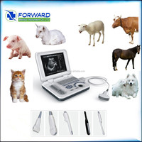 Veterinary Portable Cow/Dog/Pig Pregnancy Ultrasound Scanner