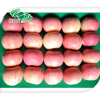 best price Yantai Fresh red fuji apple exporter in china