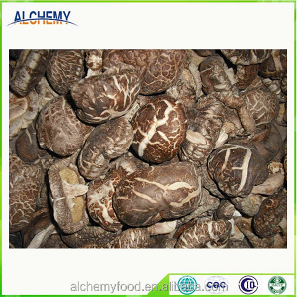 healthy and organic shiitake dried mushroom from China