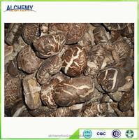 healthy and organic shiitake dried mushroom from China