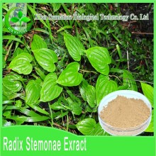 2015 Best sell Chinese herb Radix Stemonae Extract/Radix Stemonae P.E.with No Additives