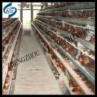 Top sale livestock/poultry/rabbit/bird cage for animal farm