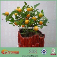 garden potting soil used greenhouses for sale