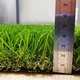 40mm W-shape landscape artificial grass for Garden, backyard, greening decoration.Football/soccer field