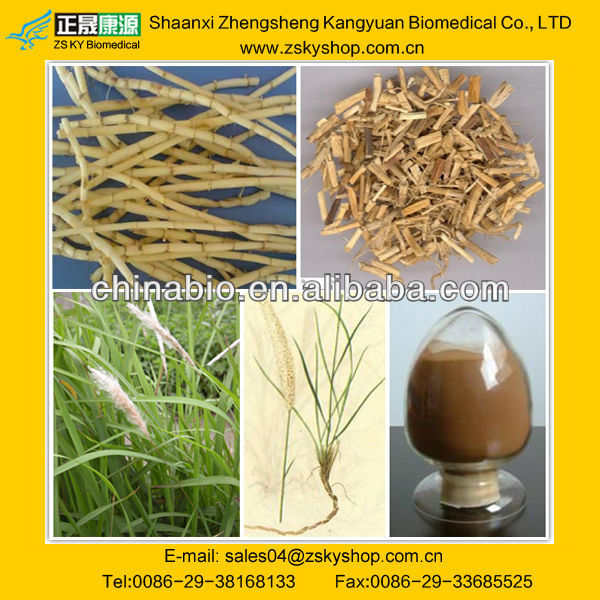 Lalang Grass Rhizome Extract
