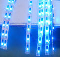 External IC 36led ws2801 digital led strip competitive