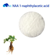 NAA 1-naphthylacetic acid / Sodium alpha-naphthylacetate CAS: 86-87-3