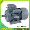 YC-2 Series Cast Iron Housing 100% copper wire Single phase electric motor
