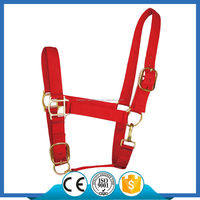 H1004 Nylon Webbing Adjustable Draft Horse Halter