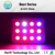 2016 Best Selling Ebay Europe All Product Full Spectrum Led Grow Lights 200w-1600w Led Used Grow Lights Sale