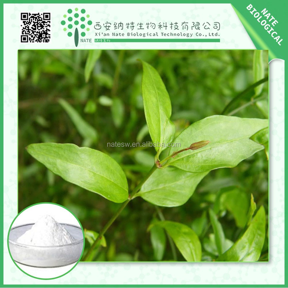High quality Sinomenium Acutum extract powder Sinomenine 98% with lower price manufactures