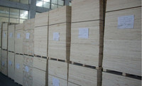 russian pine wood , linyi supplier