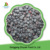 New Crop IQF Frozen Blueberry 2016