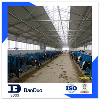 chicken farm house broiler poultry farming design