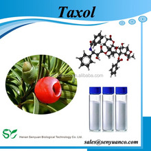 Anti cancer Natural extract Paclitaxel 99.5% //Onxal // taxol 33069-62-4