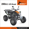 250CC Gasoline ZongShen Engine Off Road QUADS ATV