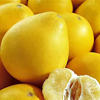 Hot Selling Good Taste Pomelo Fruit