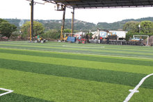 lemon yellow and viridity colors / artificial turf /soccer