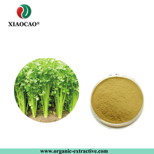 Top Standard Celery Seed Extract Chamomile Flower Powder