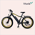 competitive price ebike/electric bike made in China