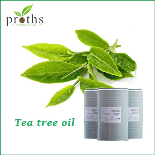 Wholesale Chinese green pure tea tree essential oil