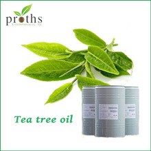 Wholesale china green tea tree essential oil