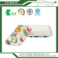 Disposable fruit pattern paper plate