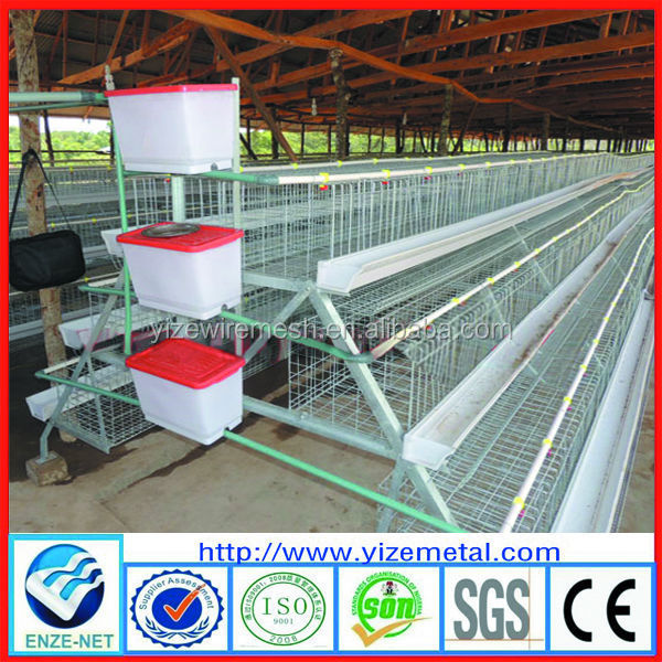 dimensions of chicken cages/small poultry house