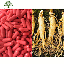 Private Label Korean Red Ginseng Root Extract Powder Soft Capsule