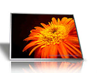 Superior Quality 10.1 Inch HSD100IFW1-A Transflective Color Lcd 1024*600,China Factory