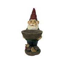 Lovely resin custom Garden gnomes