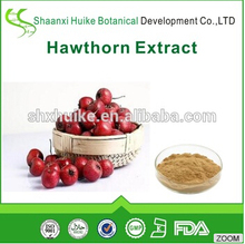 Natural hawthorn fruit extract/hawthorn berry extract/hawthorn flavones