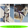 High fashion dog harness, easy walk dog harness, dog soft harness