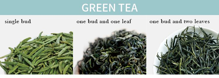 High quality hot sell chinese green leaf tea sichuan