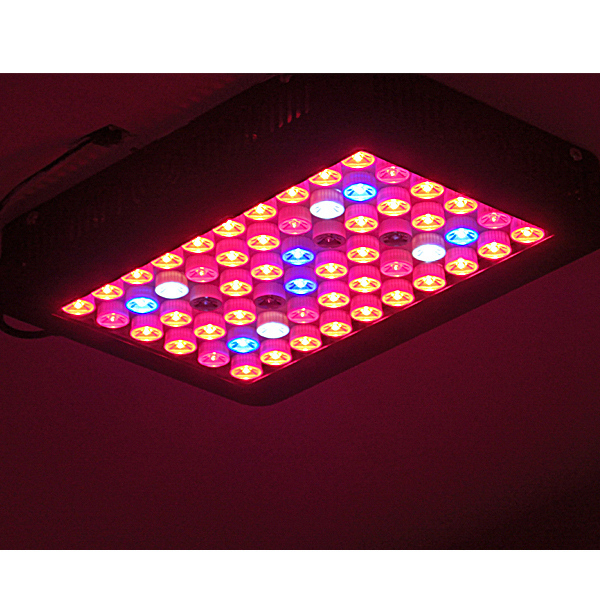 Led grow light hydroponic/orchids tissue culture/tray led seed light 900w 1000w grow led light