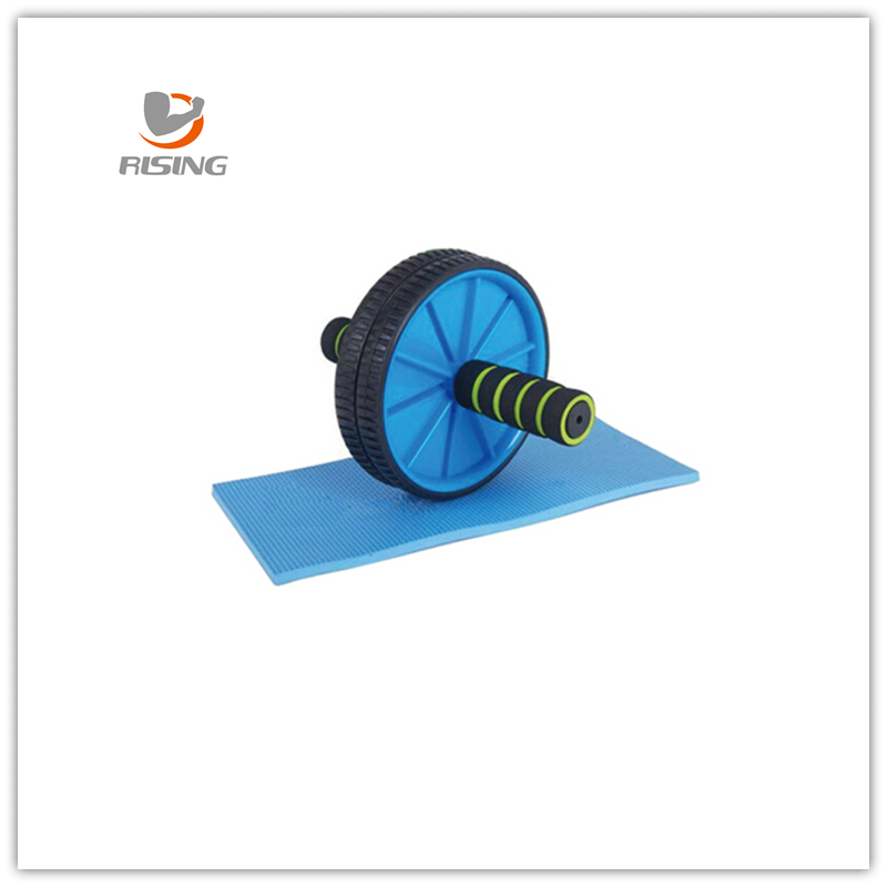 Fitness Exercise Dual Workout Exercise Wheel with mat