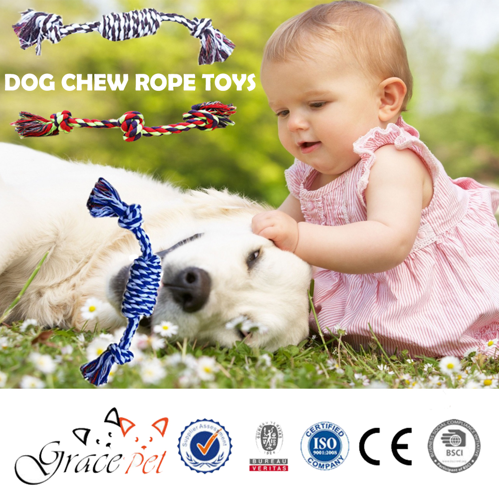 Perfect Pet Chew toys for Dog small breed chewer