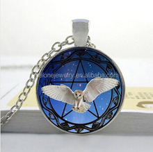 DIY star of David eagle owl necklace custom photo Necklacec Art glass dome jewelry Nature Glass Necklace