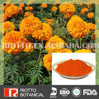 Natural marigold extract leaf plant extract