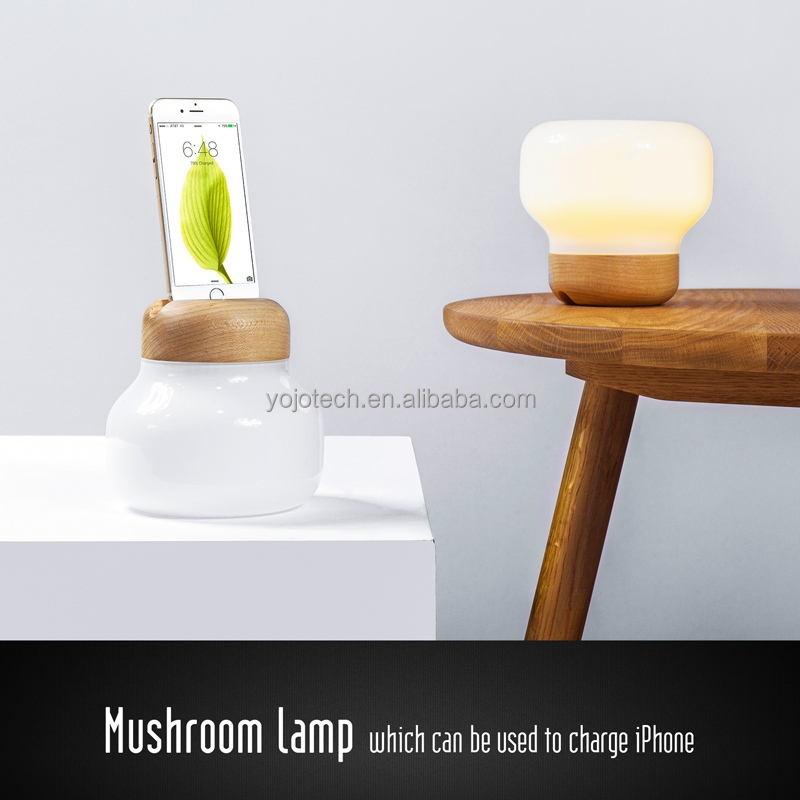 MFI Certified Charging Station, 2 in 1 Multifunction LED Table Lamp with Charging Dock for iPod, iPhone, and iPad