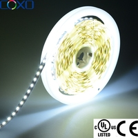 Shenzhen Cheap 8mm 10mm 5050 3528 LED W/WW/RGB Strip 100m